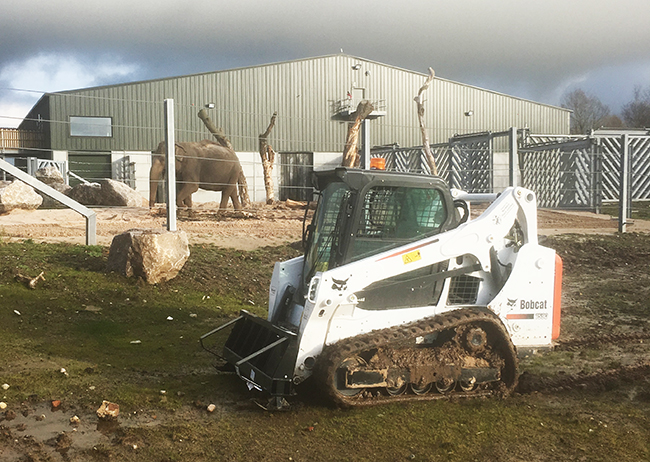 Bobcat Track Loader for Blackpool Zoo Project Elephant